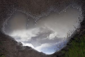 a summer shower puddle tres pedras.jpg
